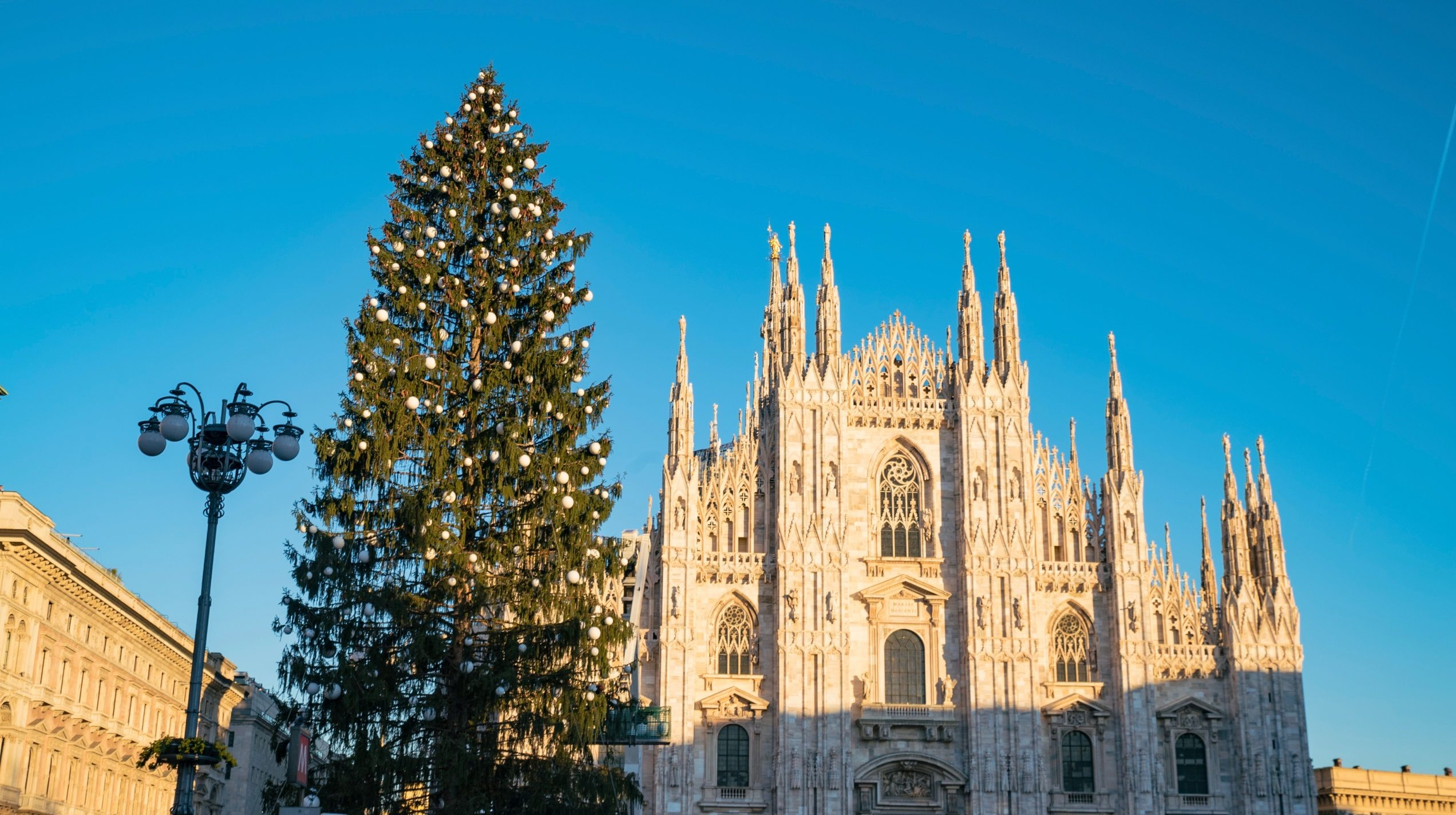 Albero di Natale Milano Piazza Duomo