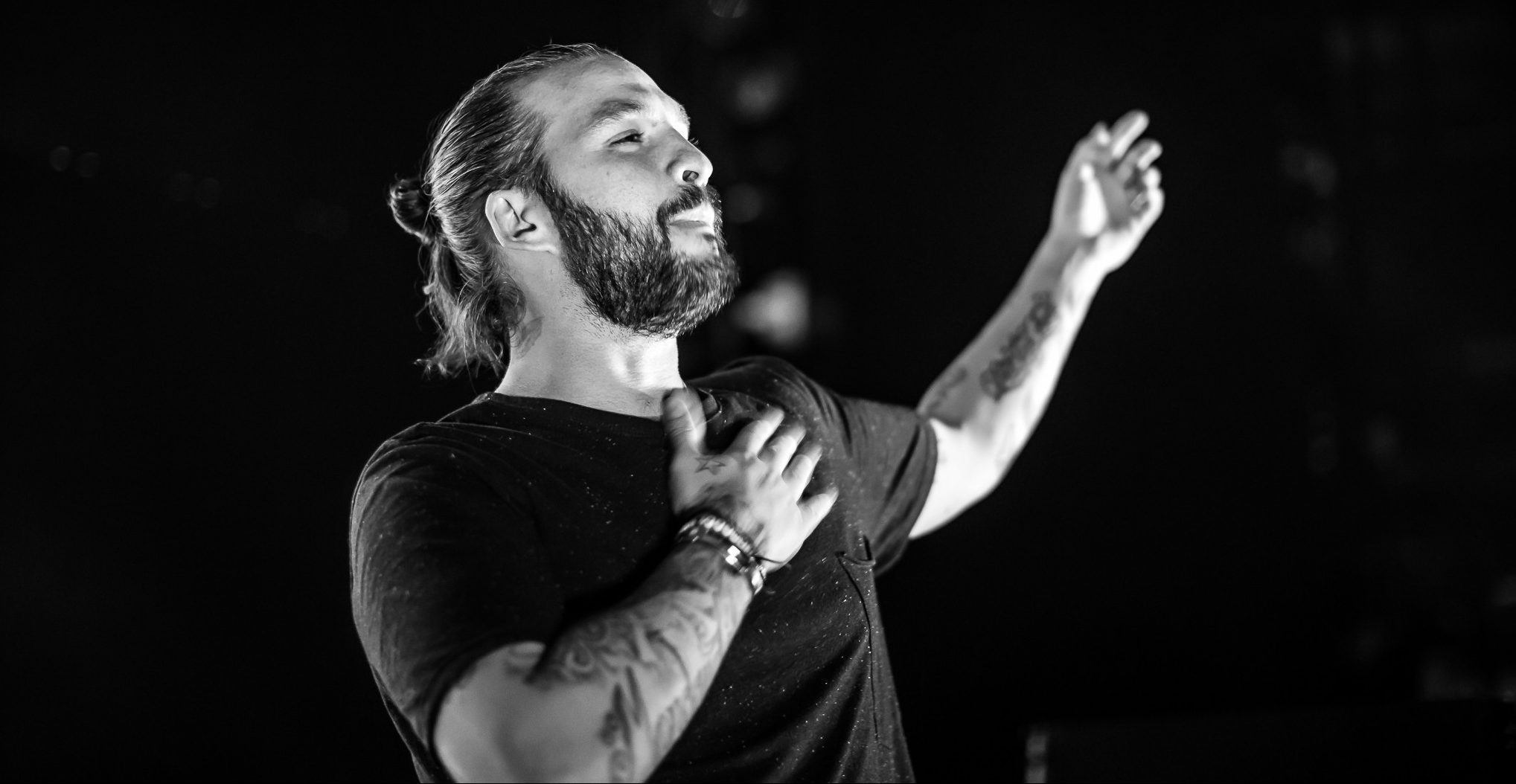 Steve Angello all life pass