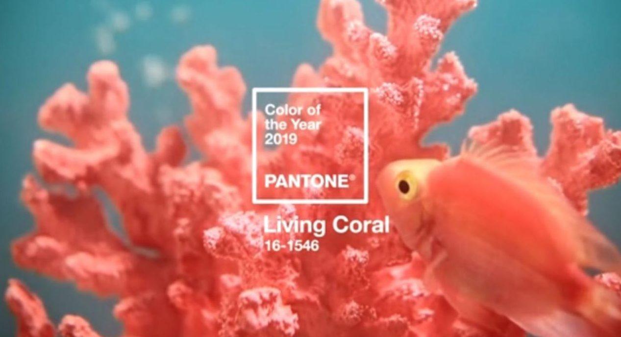Living Coral il colore dell anno